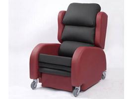 Alpha Riser Porter Chair
