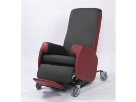 Tintern Riser Porter Chair
