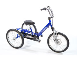 Theraplay TMX T5 Tricycle