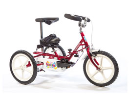Theraplay Terrier Trike