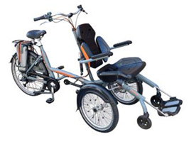 Theraplay O-Pair Companion Cycle
