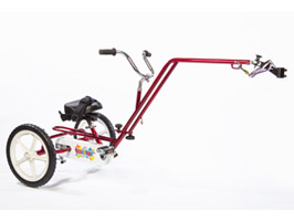 Theraplay Terrier Hitch Trike
