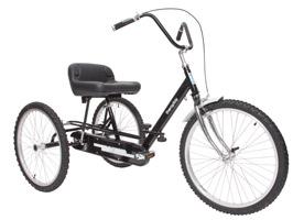 Theraplay Tracker 24 Trike