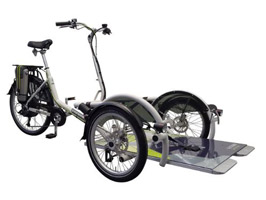 Theraplay Velo Plus Companion Cycle